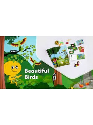 Flintobox Beautiful Birds (2 to 3 years old)